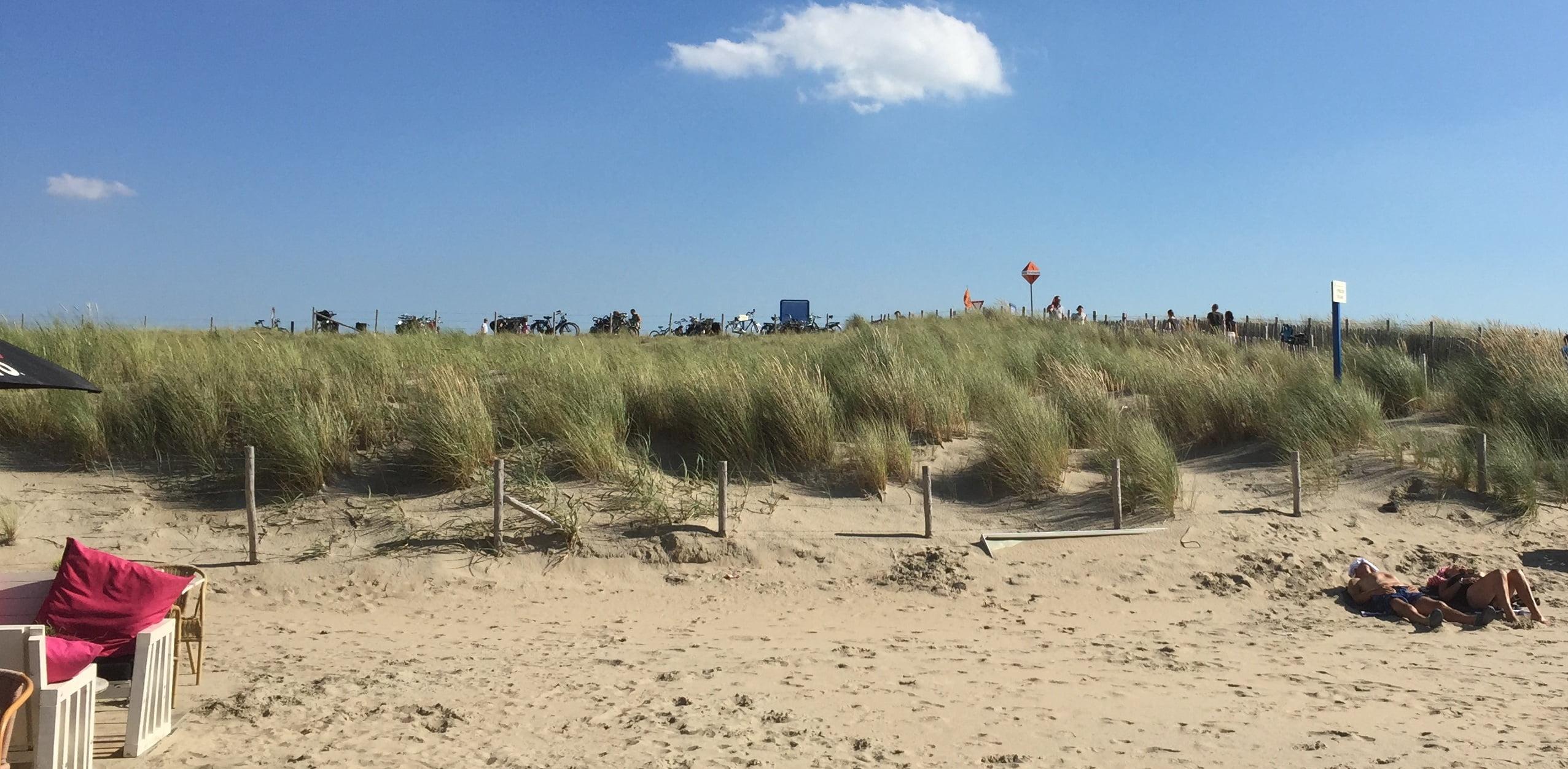 Umgebung Den Haag